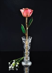 Roses with Crystal Vase, Gold Trimmed Pink Rose