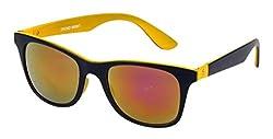 Esperto Wayfarer Sunglasses (Black)