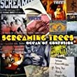 Ocean of Confusion-Songs of Screaming Trees 1990