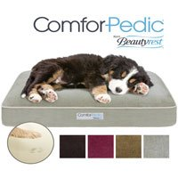 Simmons Comforpedic Orthopedic Napper Memory Foam Pet Bed, 20 by 30 by 4-Inch, Green