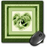 jaclinart-rose-heart-garden-nature-florals-flowers-damask-olive-green-heart-rose-surrounded-by-damas