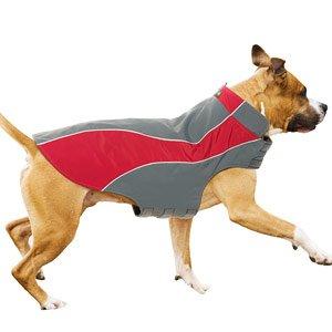 Amazon.com : Kakadu Pet Explorer Nylon Fleece Reflective