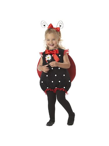 Infant Toddler Lil Lady Bug Costume Bundle With Accessories ( SIZE S )