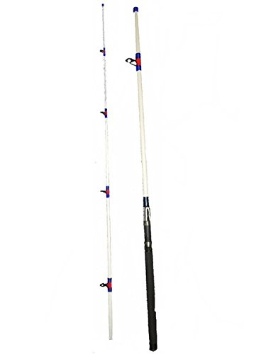 Salt Water Surf Rod 10' (10 Ft Casting Surf Rods compare prices)