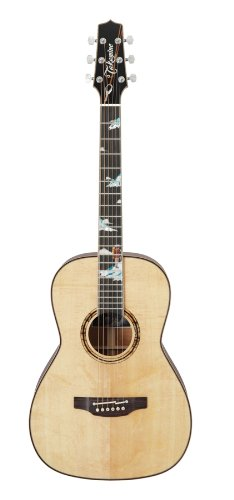 Takamine Limited Edition Models Peak Special Edition New Yorker Body Non-Cutaway Electric Guitar