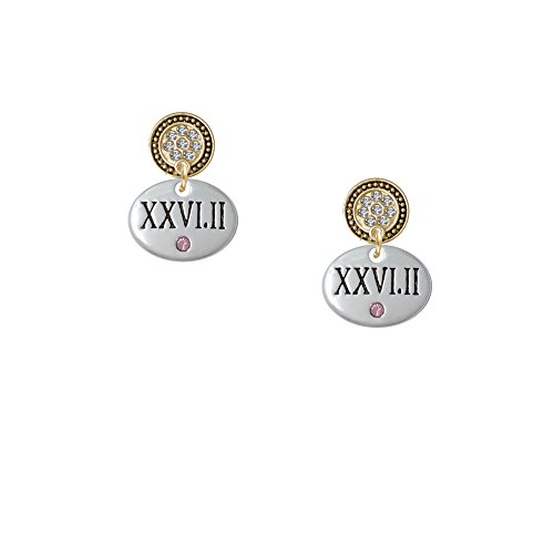 Marathon With Pink Crystal Roman Numeral - Gold Tone Lulu Disc Earrings