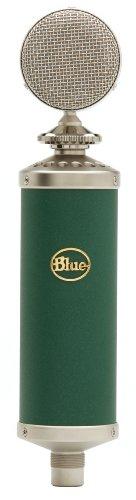 Blue Kiwi