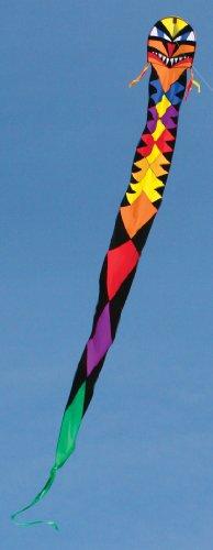 Into The Wind Beauty Kirin Dragon Kite