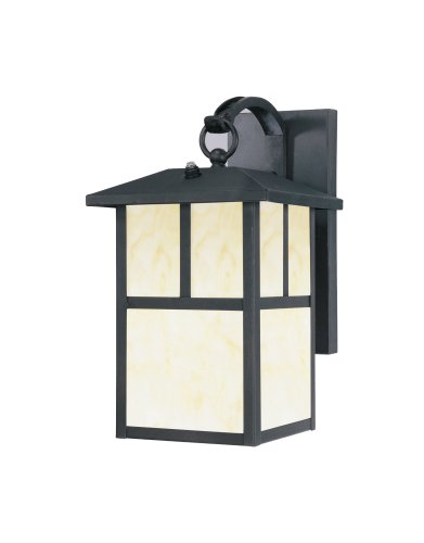 Westinghouse Lighting 6482900 Energy Star Dusk-to-Dawn 1-Light Exterior Steel Wall Lantern, Black
