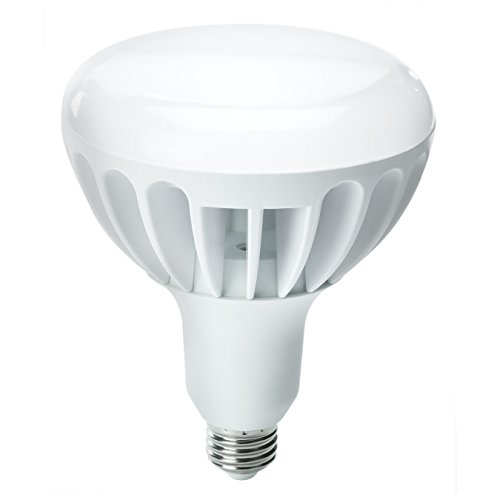 Kobi Electric K4L2 13-Watt (60-Watt) R40 Led 5000K Cool White Indoor Flood Light Bulb, Dimmable