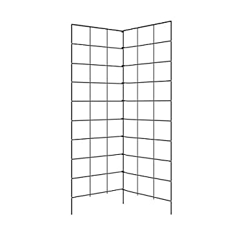 Two Panel Folding Trellis