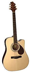 Samick Greg Bennett Design D5CE Acoustic Guitar, Natural