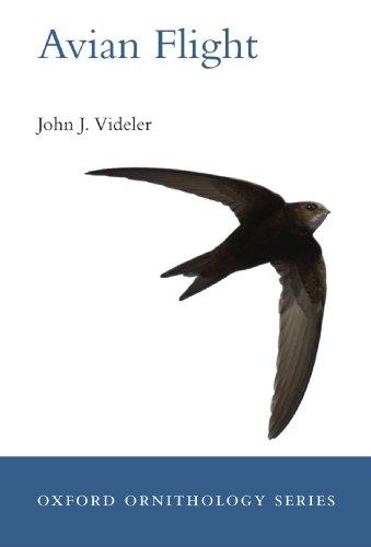 Avian Flight (Oxford Ornithology)
