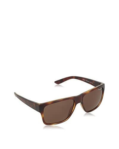 ARNETTE 0 DARK HAVANA FRAME WITH BROWN LENS