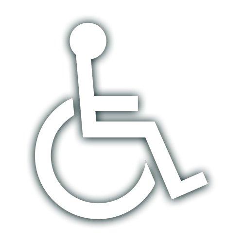 Wheel Chair Vans 3595
