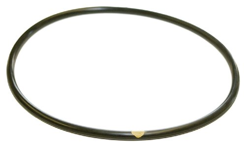 Hayward CLX200K Pool Chlorinator Lid O-Ring for CL200/CL220 (Chlorinators compare prices)