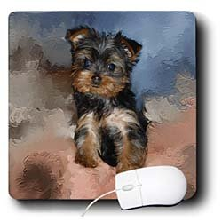 Dogs Toy Yorkie - Toy Yorkie Puppy - Mouse Pads