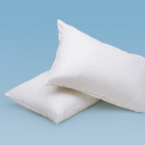 Quilts Etc. Imported White Duck Feather Pillows