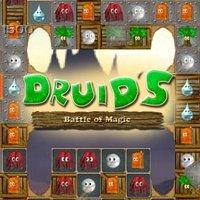 Druid's Battle of Magic [Download]