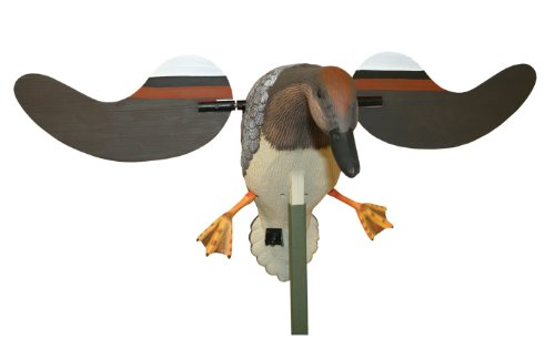Mojo Outdoors Gadwall Decoy (Mojo Decoy Timer compare prices)