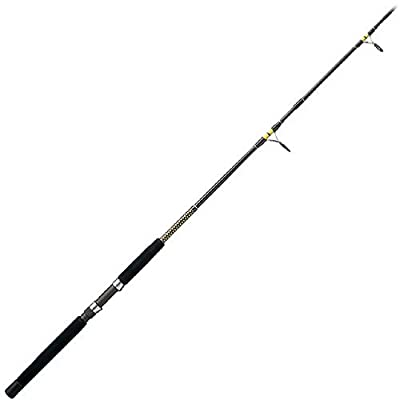 Shakespeare Ugly Stik Big Water Surf Spinning Rod from Shakespeare