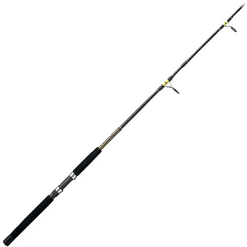 Shakespeare Ugly Stik Big Water Surf Spinning