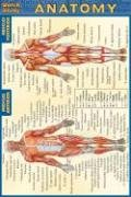 Pocket Anatomy Laminated Reference Guide (Quick Study)