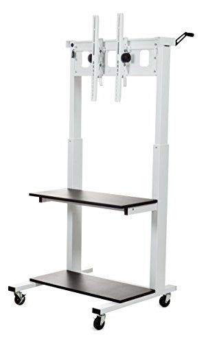 Flat Panel Cart in Light Gray (Flat Panel Cart compare prices)