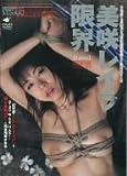 限界 美咲レイラ [DVD]