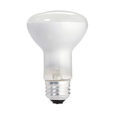 Philips 223115 Soft White 45-Watt R20 Indoor Flood Light Bulb