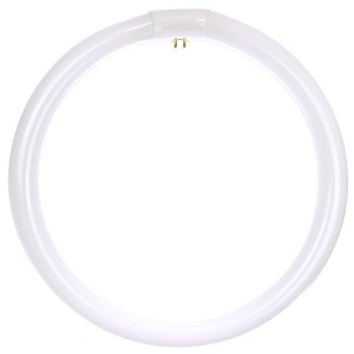 Sunlite Fc12T9/Cw 32-Watt Fc T9 Linear Fluorescent Lamp 4-Pin Base, Cool White