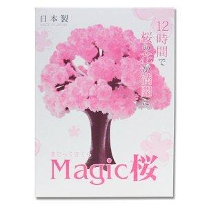 マジック桜 12時間で本物の桜の様にモコモコ育つマジック桜 日本製