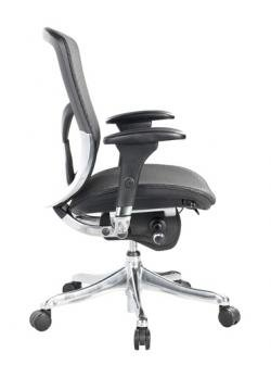 Fuzion Mesh Ergonomic Chair with Aluminum Frame Black Mesh Seat Back/Aluminum Frame
