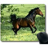 img - for Gaming Mouse Pad Natural Eco Rubber Custom Oblong Running Brown Horse MousePad Computer Desk Stationery Accessories Mouse Pads For Gift book / textbook / text book