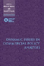 Dynamic Issues in Commercial Policy Analysis