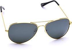 Optis Aviator Sunglasses (Golden) (SRSXC3L1)