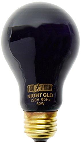 Exo Terra Night-Glo Moonlight A19 Lamp, 50-Watt (50 Watt Heat Lamp compare prices)