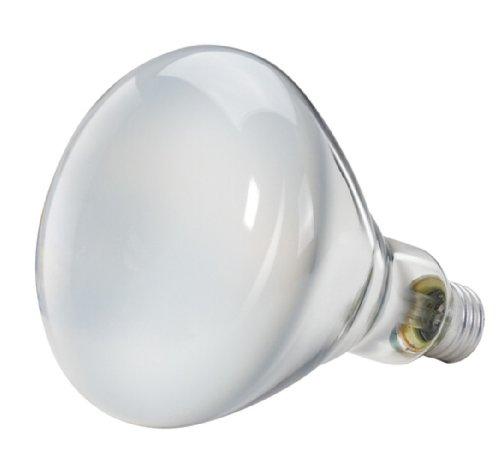 philips 139279 soft white 65 watt br40 indoor flood light. Black Bedroom Furniture Sets. Home Design Ideas