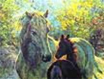"""Alu-Bild """"Pferd mit Fohlen"""", im Profilrahmen (Schwarz-Hochglanz), 22,5 x 17,5 cm, (1883)"""