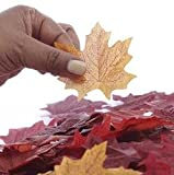 Package of Approximately 80 Assorted Rich Fall Colored Silk Maple Leaves for Weddings, Events and Decorating