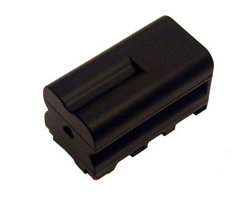 Battery-Biz Inc 7 2 Volt Li-Ion Camcorder BatteryB0000X675Y