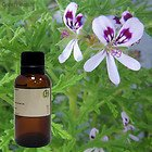 Rosemary 100% Pure Essential Oil - 1oz - 30ml
