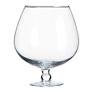 Amazon.com   Xxxl Snifter Giant Cognac Glass Versatile Decoratable