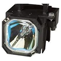 Electrified 915P028010 O-Series Replacement Lamp