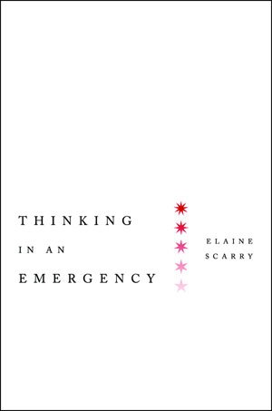 Thinking in Emergency (Amnesty International Global Ethics Series), Amnesty International, Elaine Scarry