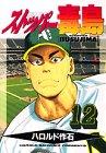 ストッパー毒島 12 (ヤングマガジンコミックス)