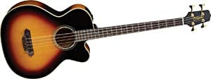 Takamine Pro Series TB250SC-SB Maple Acoustic Electric Bass Guitar, Sunburst with Case