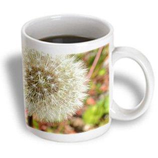 Patricia Sanders Flowers - Dandelion Wish Flower Macro Flower Photography - 15Oz Mug (Mug_32567_2)
