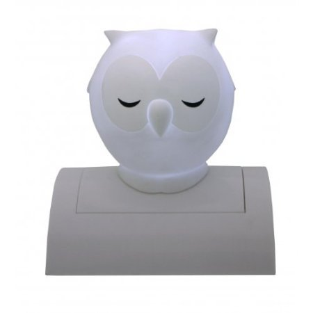 White Night Owl Night Light