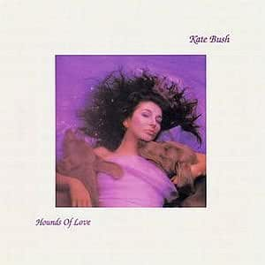 Hounds of Love [CASSETTE]